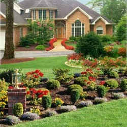un joli jardin