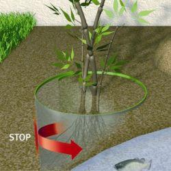 Comment installer une barrière anti rhizome
